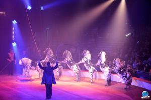 La Grande Fête Lilloise du Cirque 2018 - 36