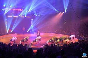 La Grande Fête Lilloise du Cirque 2018 - 38