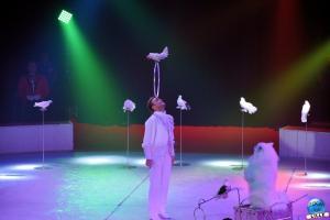 La Grande Fête Lilloise du Cirque 2019 - 38