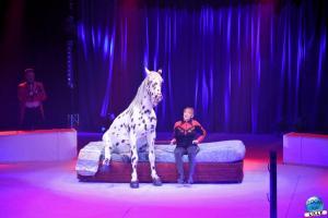 La Grande Fête Lilloise du Cirque 2019