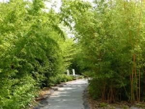 jardin_56_20100430_1817735749