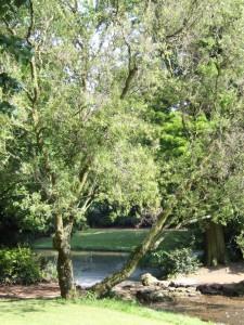 jardin_vauban_11_20090222_2044319740