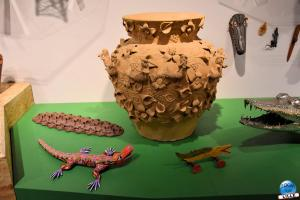 Musée d'Histoire Naturelle de Lille 2019 - 39