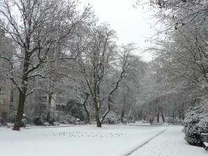 Neige à Lille 316