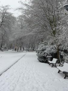 Neige à Lille 317