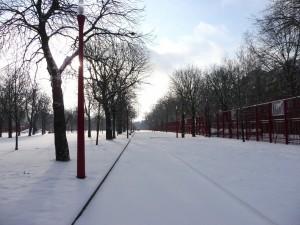 Neige à Lille 318