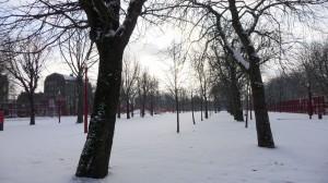 Neige à Lille 319