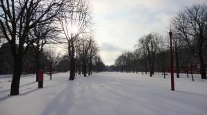 Neige à Lille 320