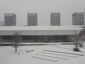 Neige à Lille 323