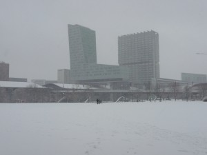 Neige à Lille 324