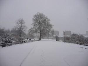 Neige à Lille 327