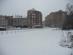 Neige à Lille 336