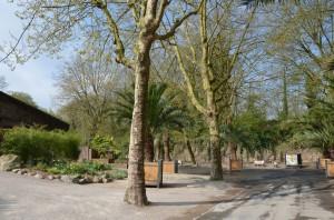 Zoo de Lille 2017 - 17