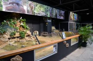 Zoo de Lille 2017 - 18