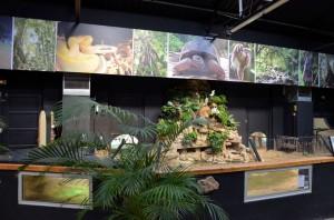 Zoo de Lille 2017 - 19