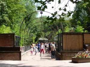 Coulisses Zoo de Lille